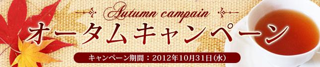 オータムキャンペーンセット キャンペーン期間:10月31日(水)